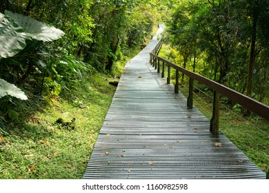Pathway of terrace hiking trail in Taroko gorge national park in Hualien Taiwan