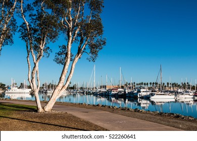Pathway through the Chula Vista Bayfront park with boats moored in the marina.