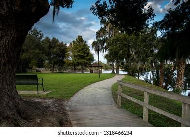 Pathway through the Park
