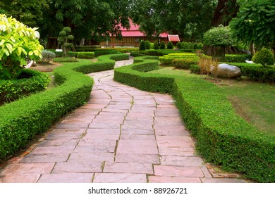 Pathway with trees on both sides