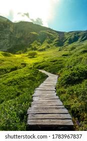 Pathway, walking path, mountain bike trail in Seiser Alm, Alpe di Siusi, Val Gardena, Italy