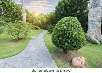 Pathway winding in garden
