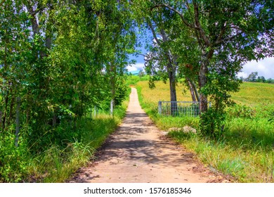 Pathway winding gravel road with green meadow and wheel marks on rode meaning the pathway to success concept.