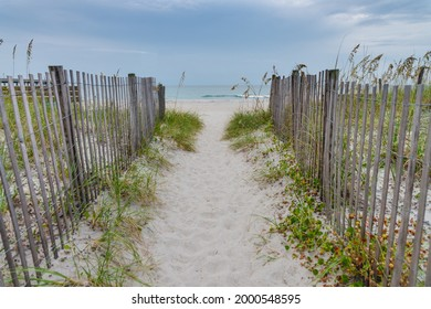 Pathway with a wooden fence and bushes on the sides leading to the sandy beach on Atlantic ocean