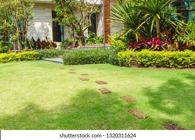 Pathways with green lawns, Landscaping in the garden, Curve walkway on green grass field and flower garden, House in the garden.