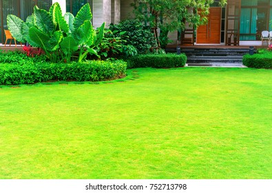 Pathways with green lawns, Landscaping in the garden, Curve walkway on green grass field and flower garden