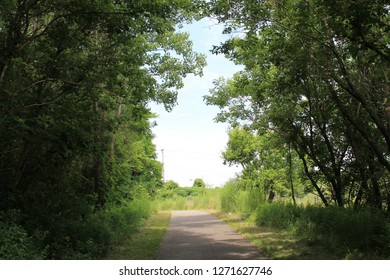 Pathways to Summer
