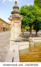 Patio with fountain in the Cathedral Mosque, Cordoba, Spain