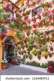 Patio full of flowers in Cordoba, Spain in summer