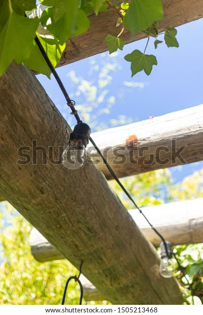 Patio Lanterns Amongst Grape Vines Rustic Stock Photo Edit Now