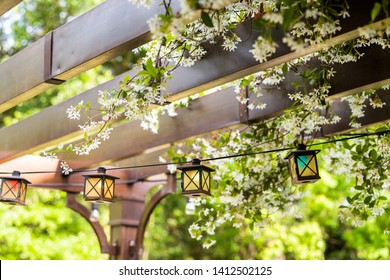 Patio outdoor spring garden in backyard of home with lantern lamps lights hanging from pergola canopy wooden gazebo and plants white flowers