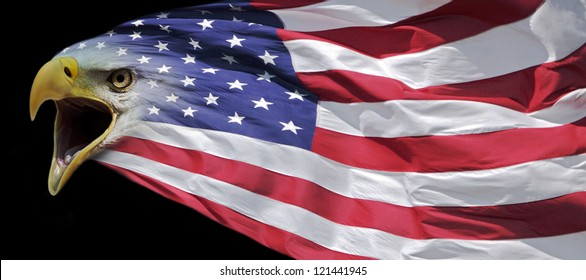 Patriotic Bald Eagle And Us Flag Banner