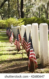 patriotic graves, with American flags with mud, selective focus