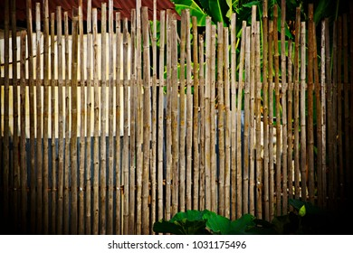 Pattern of Bamboo wood wall, bamboo fence background.