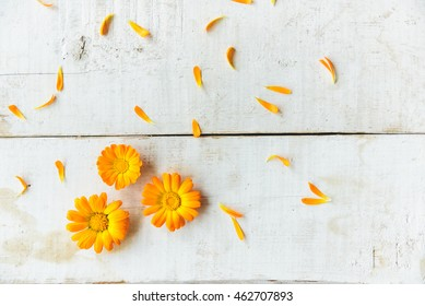 pattern of calendula flowers on the table