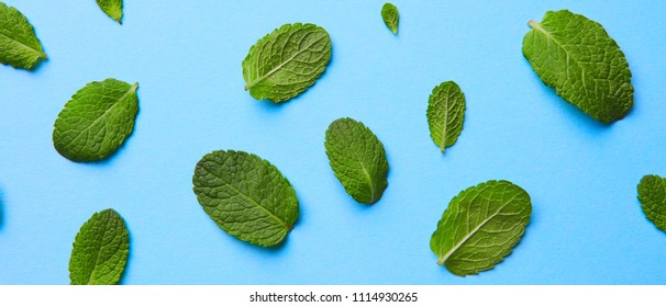 pattern of fresh green mint leaves on a blue background