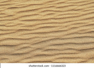 Pattern of golden sand on a beach in the summer. The textured surface of sand on the beach after a strong wind in the form of waves close up. Ribbed  sand texture