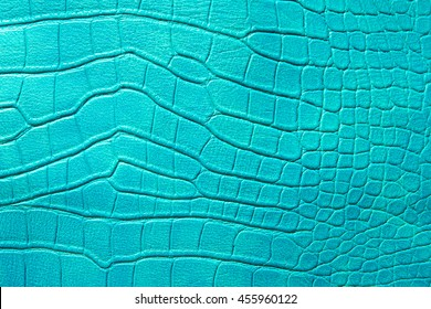 pattern of green crocodile skin.