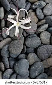 Pattern of grey river stone pebbles with flower, background
