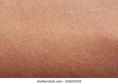 Pattern of human dark skin with cells and lines texture