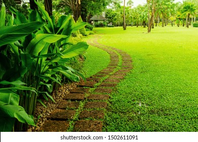 Pattern of Laterite stepping stone on a green Lawn backyard in the public park, Curve paving pattern of Laterite stepping stone on fresh green grass smooth lawn in public park, Trees in background.