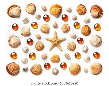 Pattern made of shells, starfish and orange glass beads isolated on white background. Flat lay, top view