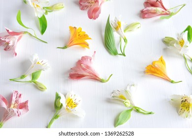 Pattern of natural flowers Alstroemeria on a white wooden background. Floral pattern. Pink, white and yellow flowers of Alstroemeria on a white background.