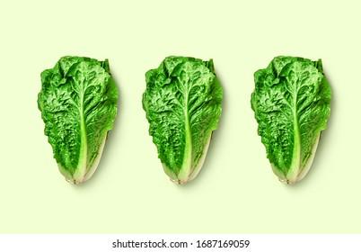 Muster eines romanischen Salats auf buntem Hintergrund. strukturierter Salatromano auf modernem Hintergrund einzeln