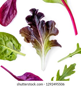 Pattern with Salad leaves. Mixed Salad leaves with Spinach, Chard, lettuce. Food concept