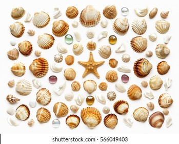 Pattern of seashells, glass beads and starfish. Isolated on white. top view