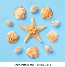 Pattern of seashells and starfish on a light blue background. Flat lay, top view