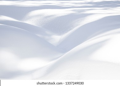 pattern of snow in the Sequoia national park with soft curves