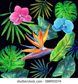 Pattern from tropical leaves and flowers drawn of colorful pencils on black background.Blue and pink orchid,strelizia,monstera,areca.