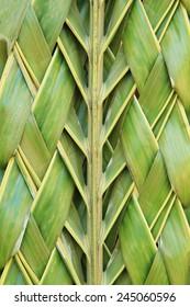 Pattern weaving of coconut leaves