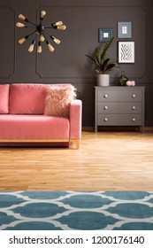 Patterned carpet on wooden floor and plant in grey flat interior with pink sofa under lamp. Real photo