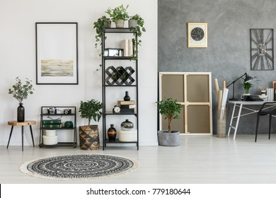 Patterned round carpet and plants on a shelf in living room with contrast color walls with poster