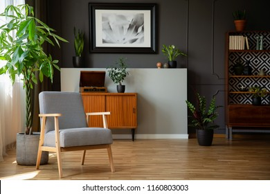 Patterned wooden armchair next to plant in grey living room interior with poster. Real photo