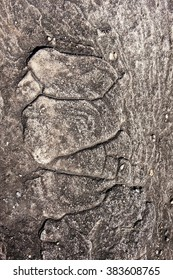 Patterns on the stone