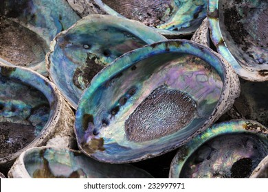 Paua Shells/ the inside marbling of a Paua or more commonly known Abalone shell
