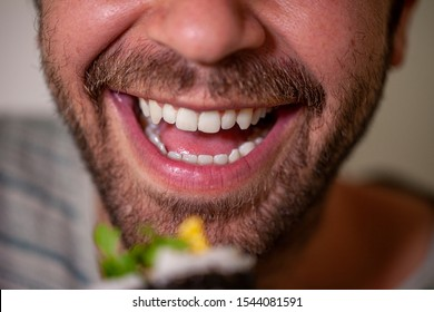 São Paulo, Brazil - June 25, 2019: Close up of a smiling mouth of a bearded caucasian man about to eat a homemade sashimi sushi roll with chopsticks which is out of focus blurred in the foreground
