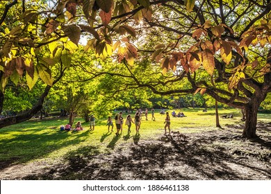 São Paulo, Brazil - November 21th, 2020: Ibirapuera Park Sunday Afternoon Full of People Playing Outdoors