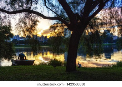 São Paulo/SP/Brazil - May 31th 2019: Ibirapuera Urban Park (Parque do Ibirapuera) with Beautiful Morning Light. Listed Historical Patrimony of the City of São Paulo, located in Moema Neighborhood.