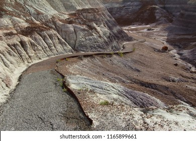 The paved Blue Mesa Trail, Petrified Forest National Park