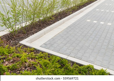 Paved car park with green border; Parking area paved with grey and white concrete stones, bordered with young shrubs; Garden design and landscape architecture; Public space