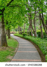 Paved pathway in a park through residential area in Vancouver, Canada