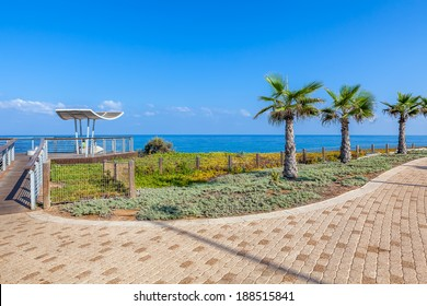 Paved promenade with palms and viewpoint along Mediterranean sea shoreline in Ashkelon, Israel.