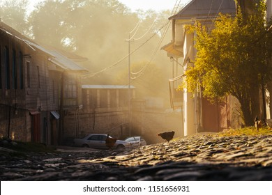 paved street in the rays of the morning sun, old houses and green trees