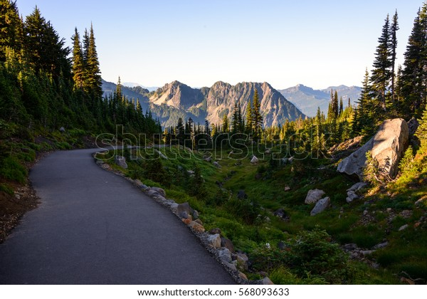 Paved Trail through the Beautiful Mount Rainier National Park