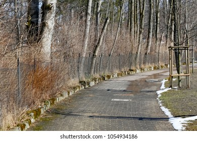 Pavement along the fence with a forest behind it. Such a walk route can be seen in the city of Zakopane in Poland