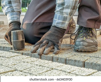 Paver laying pathway out of concrete pavement blocks